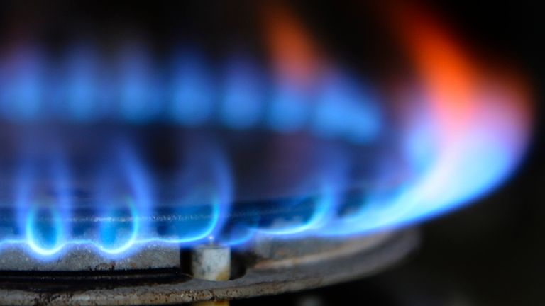 Fears continue over future of energy firms as minister insists price cap must 'remain in place'